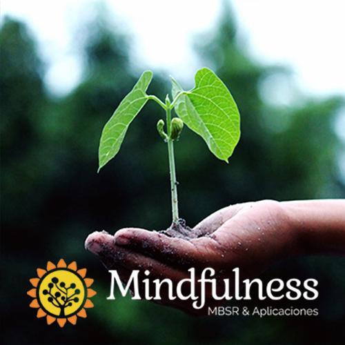 mindfulness-barcelona.com